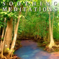 Soothing Meditations -Rainforest