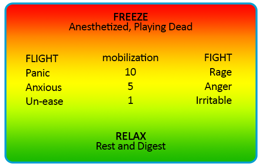 Freeze-Relax-chart.png